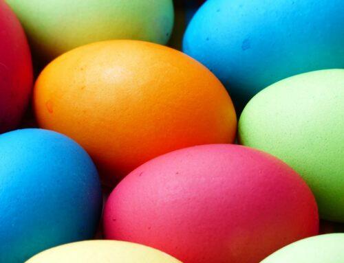 Das Ei. Hintergründe und Irrglaube.