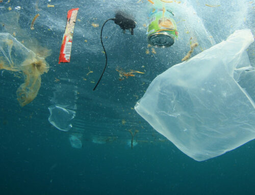 Europäische Plastikindustrie setzt sich Recyclingziele
