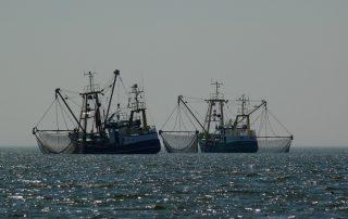 Fisheries Ships Ocean