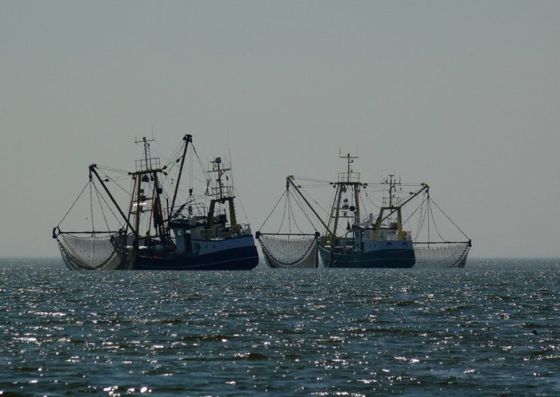 Fisheries Ships Ocean
