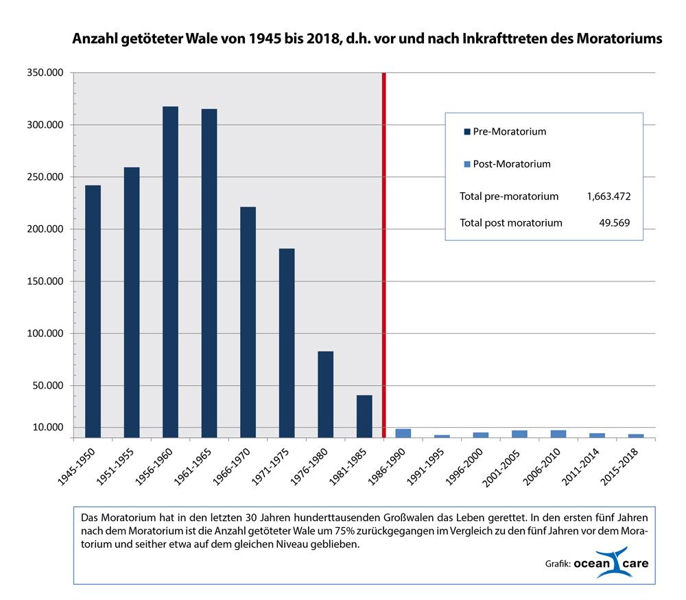 Anzahl getöteter Wale 1945-2018. Die Anzahl der vor bzw. nach dem Inkrafttreten des Moratoriums getöteten Wale zeigt deutlich die signifikante Wirkung des Fangverbots.
