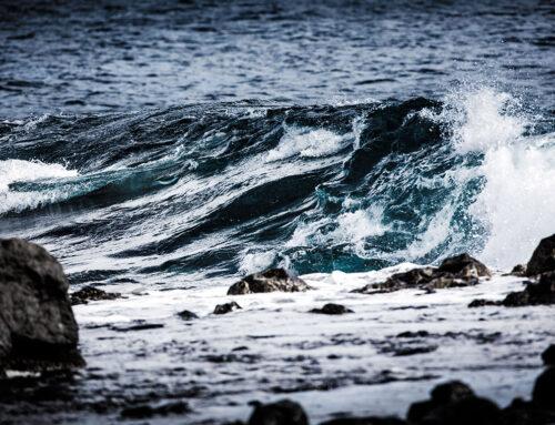 Welttag der Ozeane 2021